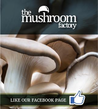 The Mushroom Factory   Home